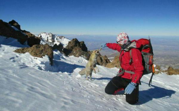 Mt Sabalan Trek & Climb-6Days